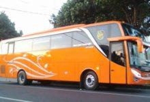 Rental Bus Pariwisata Pemalang