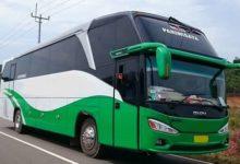 Rental Bus Pariwisata Purworejo