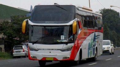 Rental Bus Pariwisata Jember