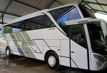 Sewa Bus Pariwisata Di Jambi Harga Termurah